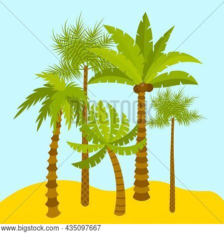 Cute Cartoon Palm Oasis. Exotic Summer Trees In Flat Style. Palms In Desert Or On Island. Paradise C