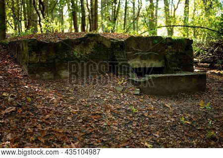 A Bunker (shelter) From World War 2 In The Woods Of The Waterleidingduinen (heemstede  Zandvoort  Vo