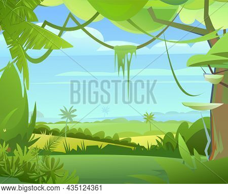 Jungle Plants. Flora Landscape. Dense Thickets. View From The Tropical Forest Panorama. Southern Rur