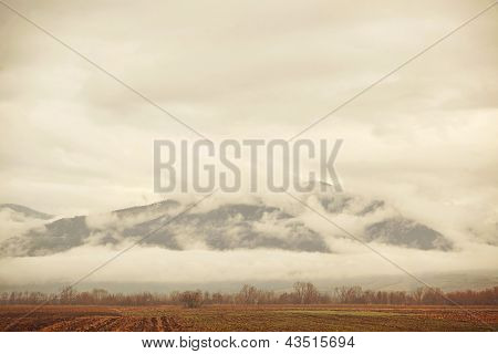 Misty Mountains & Field