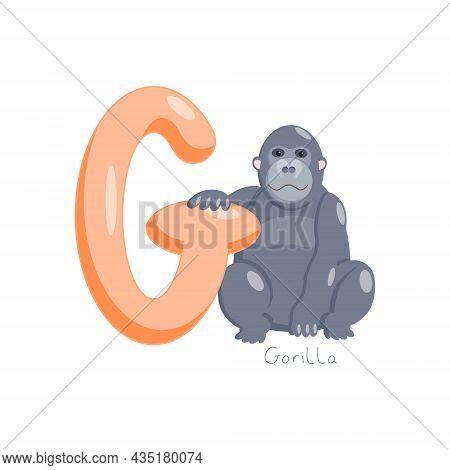 Letter G. Childrens Alphabet, Cute Gorilla. Vector Illustration For Learning English.