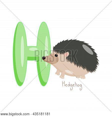 Letter H. Childrens Alphabet, Cute Hedgehog. Vector Illustration For Learning English.