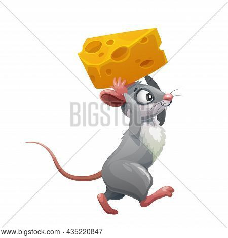 Cartoon Grey Mouse With Cheese, Vector Rodent Animal Of Cute Rat Or Funny Little Mouse Character Car