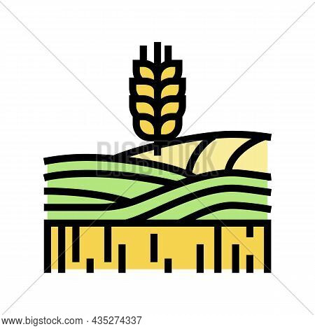 Wheat Growth Field Color Icon Vector. Wheat Growth Field Sign. Isolated Symbol Illustration