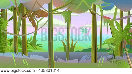 Rain Forest. Dense Thickets. Morning Sunrise Dawn Or Evening Sunset. View From The Jungle Tropical F