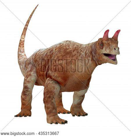 Shringasaurus Archosaur Over White 3d Illustration - Shringasaurus Was A Herbivorous Archosaur That