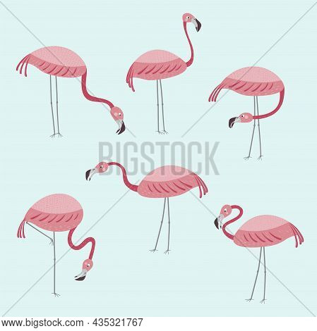 Vector Set With Six Flamingos. Pink Flamingos Stand Isolated On A Blue Background. Hand Drawn Illust