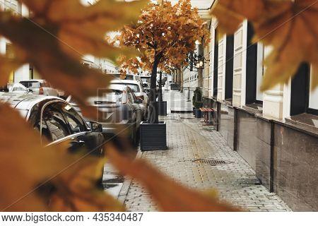 Fall Season In Town. View On Urban Road, Parked Cars And Pedestrian Street Through Bright Orange Fol