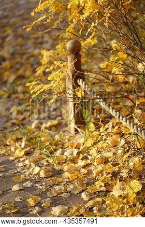 Closeup Of Wooden Fence And Rope On Pathway With Fallen Dry Yellow Leaves At Sunset. Selective Soft