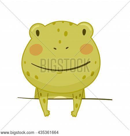 Cute Green Funny Frog Amphibian Animal Character Cartoon Vector Illustration
