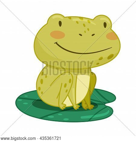 Cute Frog Sitting On Lotus Leaf In Pond. Green Funny Amphibian Toad Character Cartoon Vector Illustr