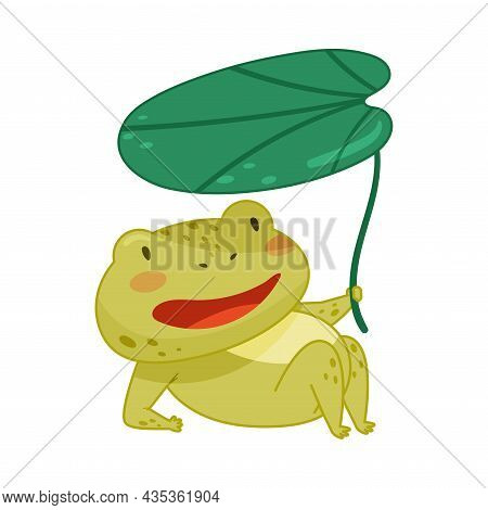 Cute Frog Lying Under Lotus Leaf. Green Funny Amphibian Toad Character Cartoon Vector Illustration