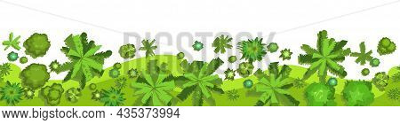 Jungle. Edge Forest Top View. Horizontal Seamless Composition. Overgrown Rainforest. Isolated On A W