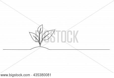 Continuous Line Drawing Of Seedling On Ground, Line Art Vector Illustration