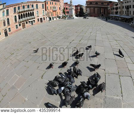 Square In Venice Called Campo Santo Stefano With Pingeons During Lockdown Without People