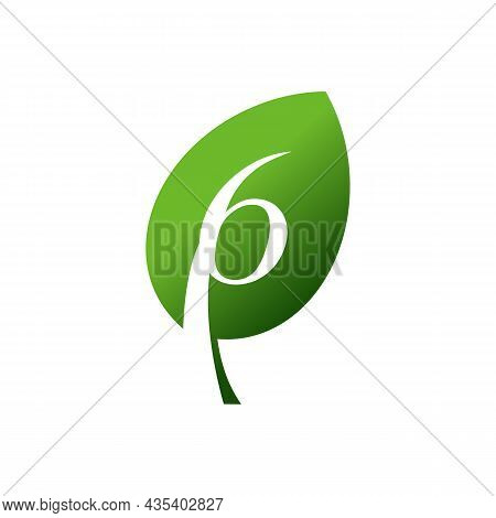 Leaf Number Six 6 Logo Icon Flat Vector Concept Graphic Design