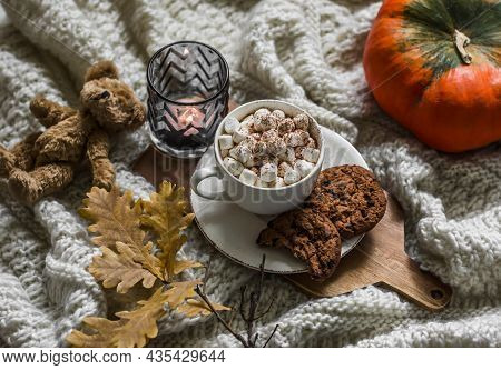 Autumn Cozy Still Life - Cocoa With Marshmallow, Chocolate Cookies, Yellow Oak Leaves Branch, Teddy