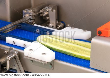 Production Line Manufacturing Conveyor For Food Packaging