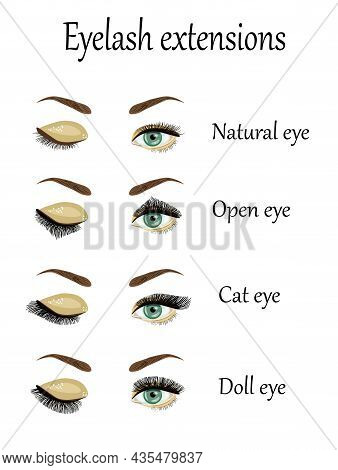 Eyelash Extension Types And Forms. Infographic Vector Illustration.