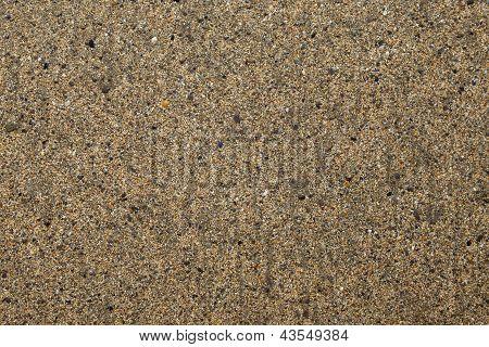 Beach - Intricate Detail - Sand Grains, Stones, Shells, Minute Detail - Background Texture.