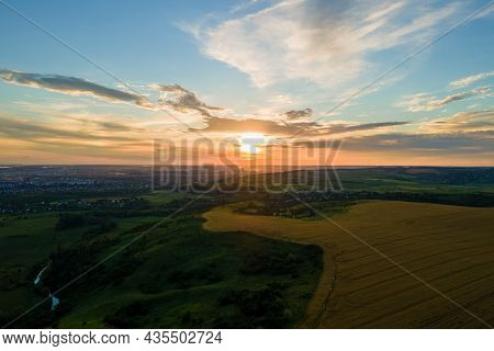 Aerial Landscape View Of Yellow Cultivated Agricultural Field With Ripe Wheat On Vibrant Summer Even