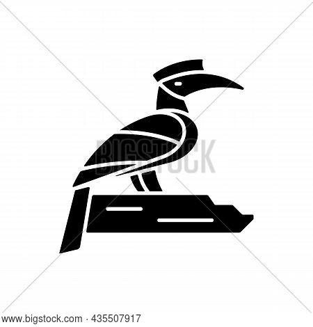 Hornbill Black Glyph Icon. Singapore National Bird. Exotic Animal. Oriental Species. Omnivorous Crea