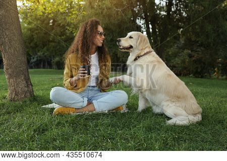 Young African-american Woman And Her Golden Retriever Dog On Green Grass In Park