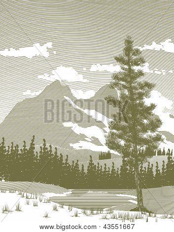Woodcut Mountain And Lake
