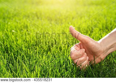 Thumb Up Gesture On Grass Lawn Background.