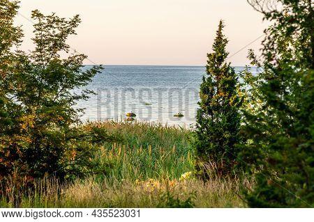 Calm View To Rocky Beach During Sunset. Coastal Sundown With Birds, Rocks, Trees, Juniper, Grass And