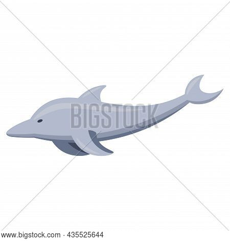 Dolphin Flat Icon. Dolphin Clipart On White Background.