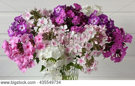 Bouquet Of Phlox Close-up As A Floral Background Garden Phlox Of Different Varieties