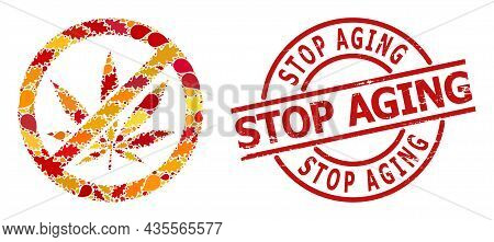 Forbid Cannabis Collage Icon Organized For Fall Season, And Stop Aging Grunge Stamp. Vector Forbid C