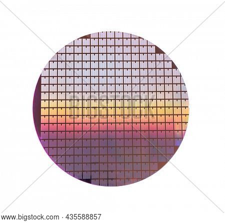 Silicon wafer with chips isolated on white background