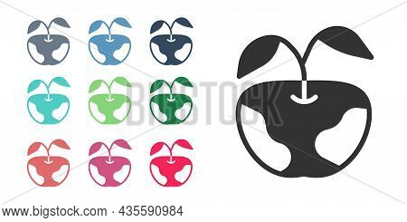 Black Apple Icon Isolated On White Background. Excess Weight. Healthy Diet Menu. Fitness Diet Apple.