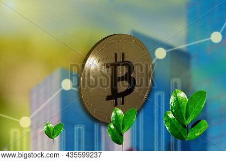 Bitcoin Gold Coin Against Industrial Business Green Sprout Background. Extraction Or Mining Virtual