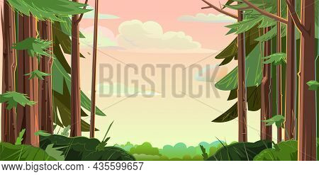 Trunks Of Mature Conifers. Beautiful Sky With Clouds. Background Picture Frame. Morning Or Evening L