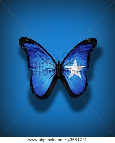 Somalian Flag Butterfly, Isolated On Flag Background