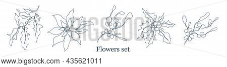 One Line Of The Pattern Of Winter Flowers. Modern Art, The Line Of Botanical Flowers (poinsettia, Ho