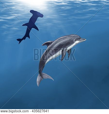 Watercolor Dolphin On The Background Of The Ocean Blue. Dolphin And Hammer Shark