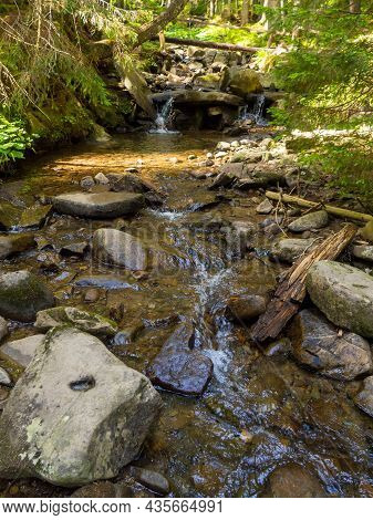 Small River Flowing Rapidly And Vividly Through Its Wild Stony Valley. Wild Hardwood Forest Accompan