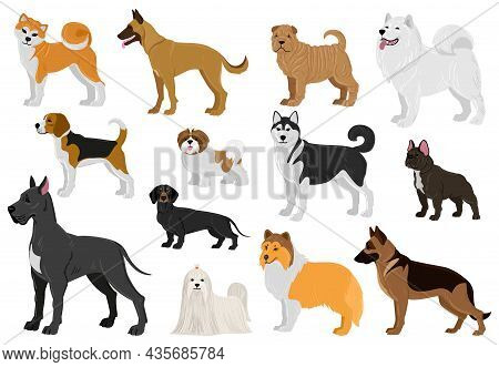 Cartoon Dogs Different Breeds, Funny Domestic Puppy Pets. Husky, Beagle, Great Dane, French Bulldog