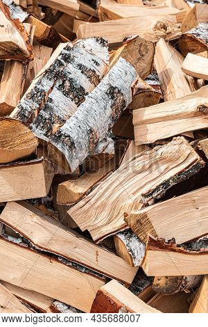 Preparation Of Firewood For The Winter. Stacks Of Firewood In The Forest. Firewood Background. Sawed