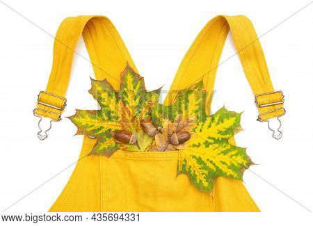 Yellow Overall With Autumn Leaves And Acorns In The Pocket Isolated On White.