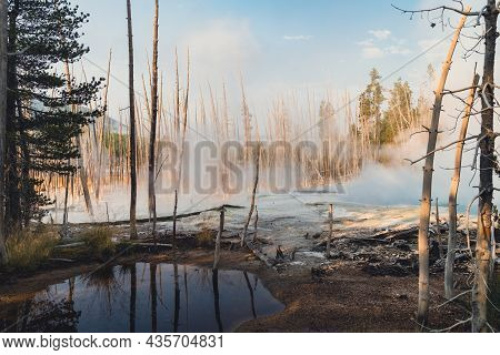 Steamy, Morning View At Norris Geyser Basin In Yellowstone National Park