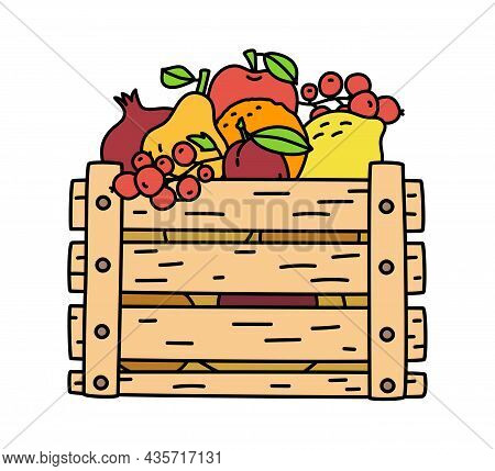 Fruit Box With Lemon, Orange, Garnet, Plum, Apple, Currant And Pear. Wooden Container Isolated On Wh