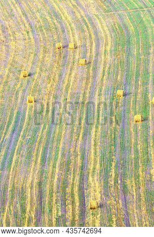 . Furrows In An Agricultural Field, A Background Image From The Air. Siberia, Russia