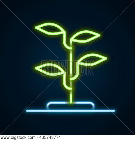 Glowing Neon Line Sprout Icon Isolated On Black Background. Seed And Seedling. Leaves Sign. Leaf Nat