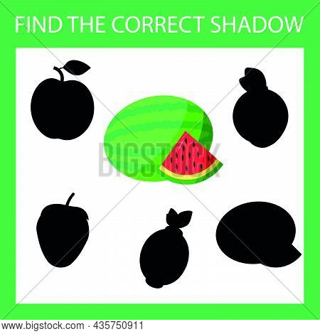 Find A Shadow Watermelon Steam Room. Match Berry With Correct Shadow Preschool Worksheet, Kids Activ