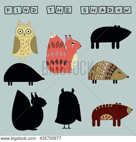 Find A Pair Or Shadow  Game With Funny Hedgehog, Squirrel, Owl.  Worksheet For Preschool Kids, Kids